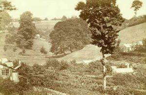 Hungerhill Gardens