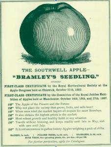Bramley apple advert